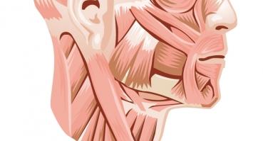 Choroba zwyrodnieniowa stawu skroniowo-żuchwowego